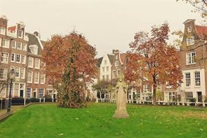 In photos: Amsterdam in Autumn