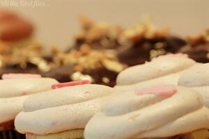 Best Kept Secret: Dlish Cupcakes in Toronto