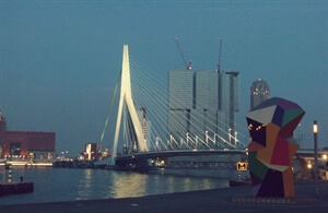 Day and Night: Erasmusbrug, Rotterdam