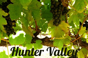 in photos: Exploring hunter valley
