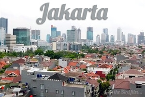 The highs and lows of exploring Jakarta