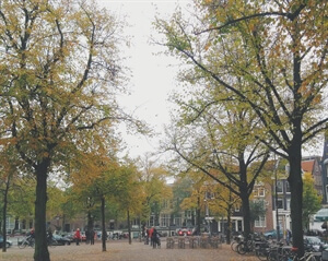 In photos: Amsterdam in Autumn.